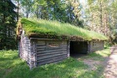 Elverum, Норвегия Стоковая Фотография RF