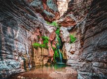 Elves Chasm Hidden In The Grand Canyon. Elves Chasm in the afternoon in a side canyon off the Colorado River in the Grand Canyon royalty free stock image