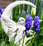 Elves Misty Angel in Spring royalty free stock photo