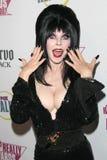 Elvira Stock Photos