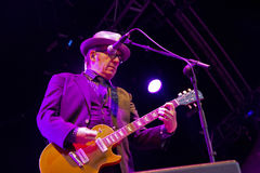 Elvis Costello (9) Arkivfoton