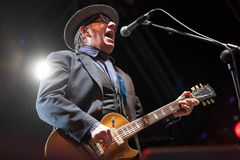 Elvis Costello Arkivfoto