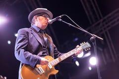 Elvis Costello (4) Στοκ Εικόνα