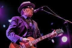Elvis Costello (5) Στοκ Εικόνα