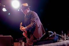 Elvis Costello (6) Arkivbilder