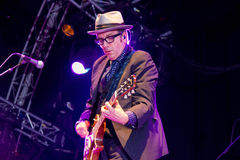Elvis Costello(7) Stock Photo