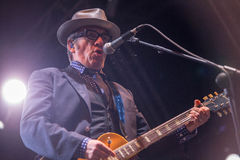 Elvis Costello(3) Royalty Free Stock Images