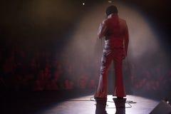 Elvis verde smeraldo in scena 3 fotografia stock libera da diritti