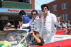 Elvises Travel in style Royalty Free Stock Photo