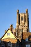 ELY, CAMBRIDGESHIRE/UK - LISTOPAD 23: Zewnętrzny widok Ely Cath Fotografia Stock