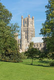Ely Cathedral Arkivfoton