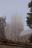 Ely Cathedral Cambridgeshire Royaltyfria Foton