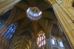 Ely Cathedral, de Achthoek Stock Fotografie