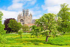 Ely cathedral in sunny winter day Stock Photo