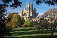 Ely Kathedrale, Cambridgeshire, England Lizenzfreie Stockbilder