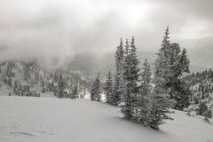 Ely sur le fond d'un excellent paysage de montagne Photos stock