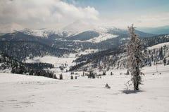 Ely sur le fond d'un excellent paysage de montagne Photos libres de droits