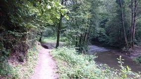 Elzbach河 库存照片