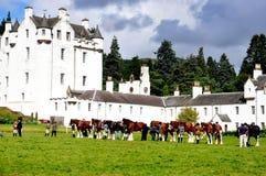 Experimentações de cavalo do castelo de Blair, Scotland Imagem de Stock