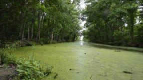 Em algum lugar em Luisiana Foto de Stock