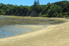 Em algum lugar em Nova Zelândia Imagens de Stock Royalty Free