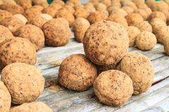 EM Ball, Effective microorganism ball. For improvement and supporting human health and hygiene, compost and waste management Royalty Free Stock Photo