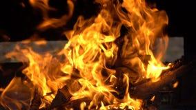 Em chamas de madeira com chamas alaranjadas filme