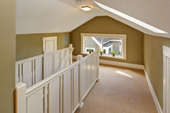 Em cima corredor verde e branco com teto arcado e skylig Fotografia de Stock Royalty Free