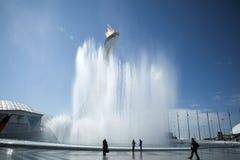 Em fevereiro de 2014 - Sochi, Rússia - tocha olímpica nos Jogos Olímpicos 2014 do inverno do mundo Imagem de Stock