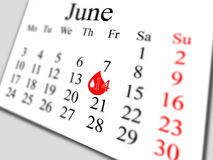 Em junho de 2013 Imagem de Stock