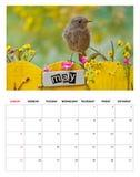 Em maio de 2014 calendário Imagens de Stock