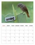 Em março de 2014 calendário Imagem de Stock Royalty Free
