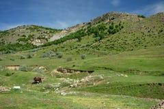 Em montanhas de Macin Fotografia de Stock Royalty Free