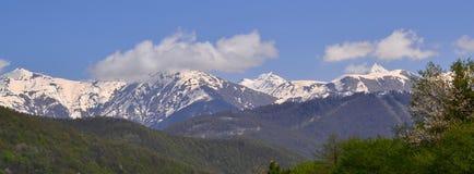 Em montanhas a mola veio Foto de Stock Royalty Free