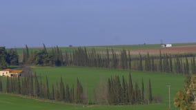 Em Nea Kallikratia, em Grécia vistos campo verde com árvores e exploração agrícola filme