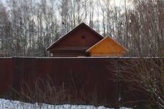 Em novembro de 2018 R?ssia Moscou Oblast Losiny Ostrov forestry imagens de stock