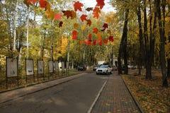 Em outubro de 2018 R?ssia Moscou Oblast Krasnogorsk Edite ao Central Park fotografia de stock