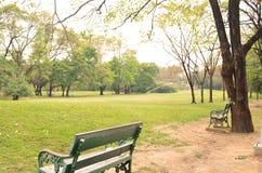 Em público parque mim Fotografia de Stock Royalty Free