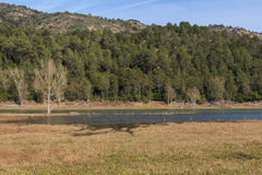 Em seguido afundado nas águas do lago Imagens de Stock
