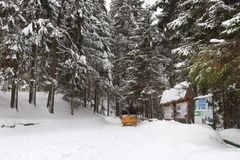 Em torno das montanhas e da floresta da neve imagem de stock