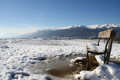 Em um dia de inverno frio Imagens de Stock Royalty Free