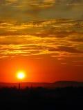 Em um por do sol Foto de Stock