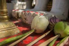 Em um templo de budistas Imagens de Stock