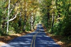 Em uma estrada secundária Foto de Stock