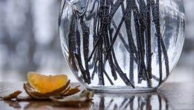Em uma fatia de um vaso com as varas das flores em bolhas da água na casca da fatia da água e da tangerina imagens de stock
