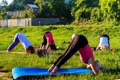 Em Uzhgorod passou um exercício ao ar livre - ioga para tudo Fotos de Stock
