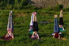 Em Uzhgorod passou um exercício ao ar livre - ioga para tudo Imagens de Stock