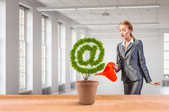 Email green concept. Mixed media Royalty Free Stock Photography