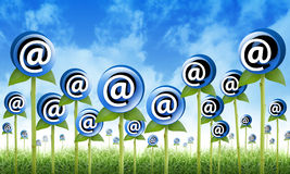 Email Internet Inbox Flowers Sprouting. Email Flowers are sprouting for a internet, newsletter inbox contact theme. The flowers have an @ symbol to signify an Royalty Free Stock Photos