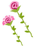Email Roses Stock Images